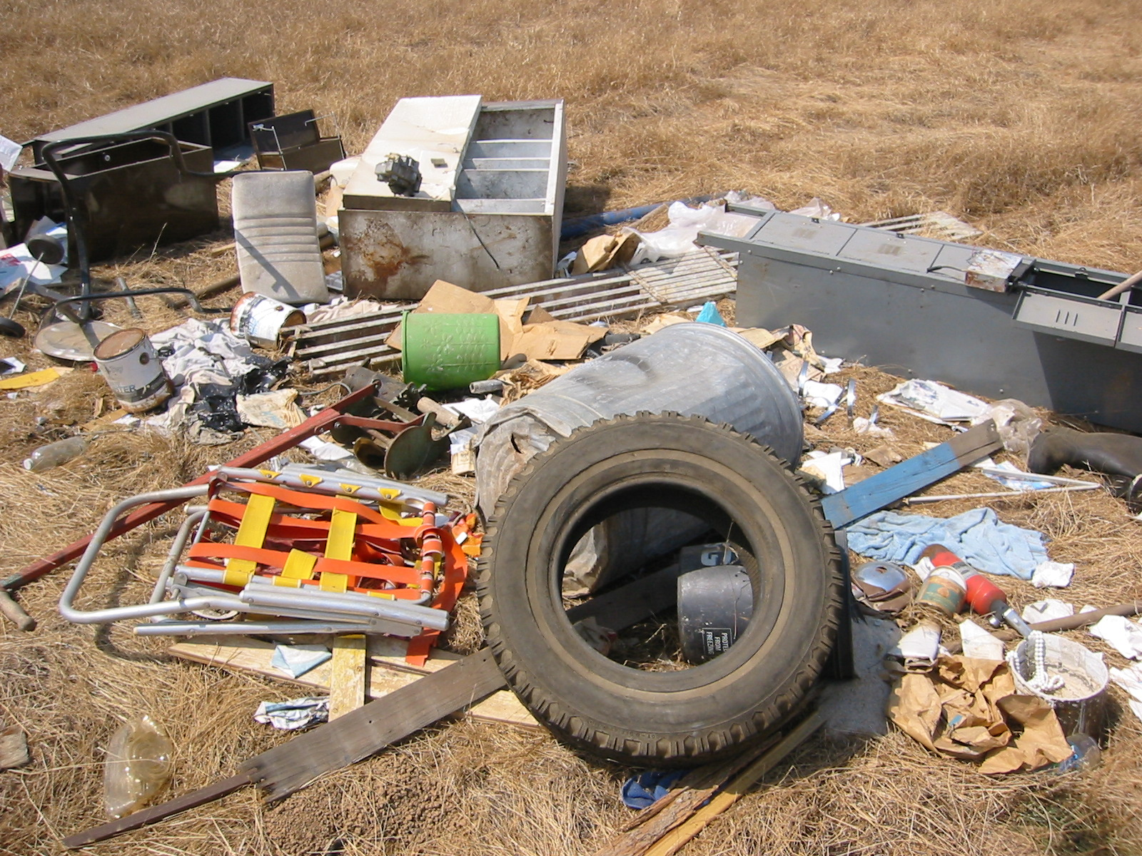 Accumulation of Trash and Debris